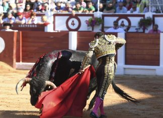 Feria taurina de Begoña, Xixón